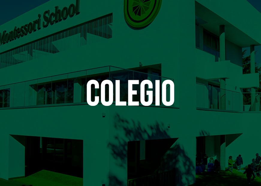 foto-colegio-montessori-madrid-colegio